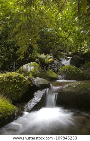 Stream flowing through rocks in a rainforest, Baru volcano,Chiriqui highlands, Panama, Central America