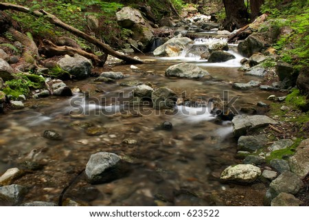 Stream flowing through the forest in the Limekiln State Park, Big Sur, California. Long exposure gives a nice motion blur on the water