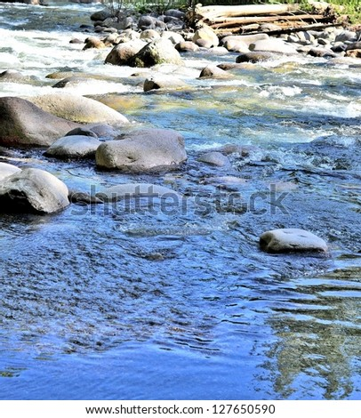 Stream flows in the forest - stock photo