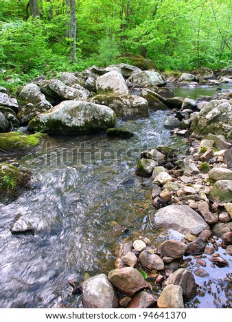 Stream flows through a dense woodland at Baxters Hollow State Natural Area in southern Wisconsin - stock photo