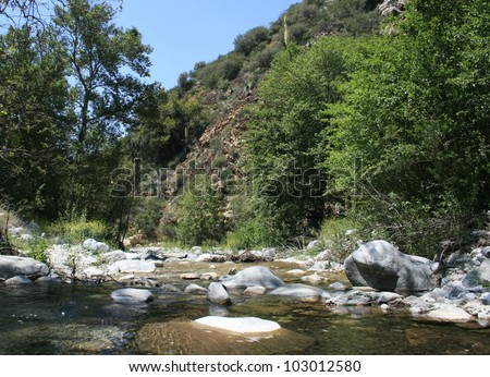 Stream in Cattle Canyon, San Gabriel Mountains, California - stock photo