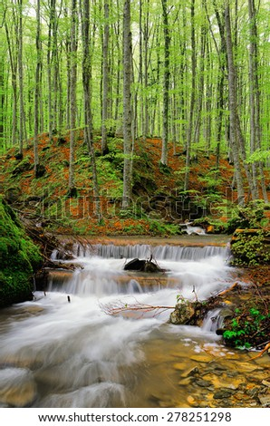 stream in the forest in autumn - stock photo