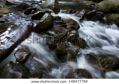 stream in the great smoky mountain in summer - stock photo