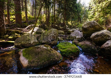 Stream in the mountains - stock photo