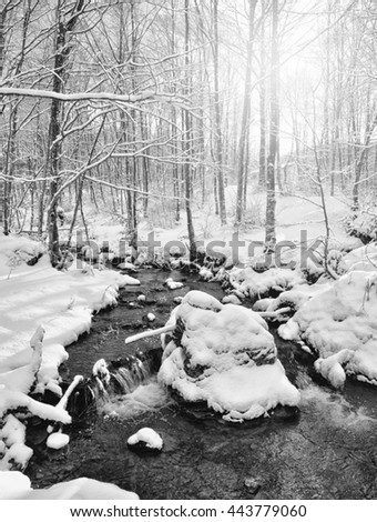 stream in the wood in winter with snow and ice