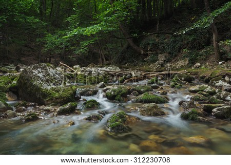 Stream of a river is flowing through stones in dark and mysterious forest - stock photo