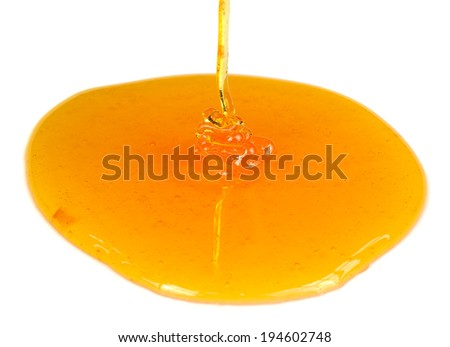 Stream of Pouring Honey on White Background - stock photo
