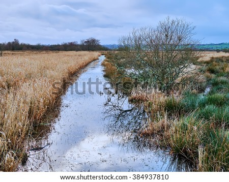 Stream running into the River Teify at Cors Carnon Nature Reserve also known as the Tregaron Bog a 12,000 year old 'raised' peat bog at Tregaron Wales.        - stock photo
