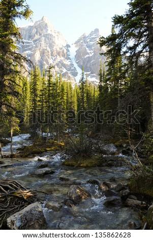 Stream to Moraine Lake, Banff National Park - stock photo