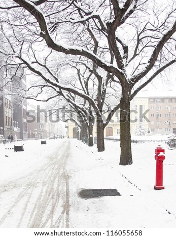 Street covered by snow