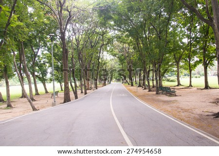 street full of green trees