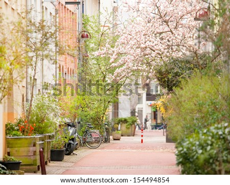 Street in Amsterdam with vintage buildings, in spring - stock photo