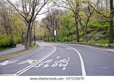 Street in Central park, New York City. - stock photo