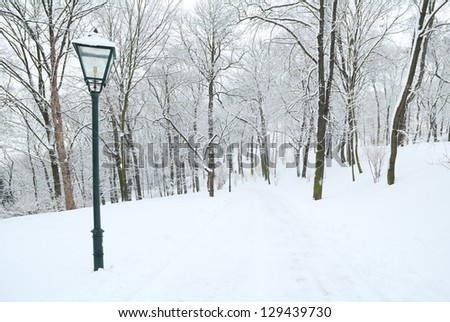 Street lamp and forest park covered in deep snow - stock photo
