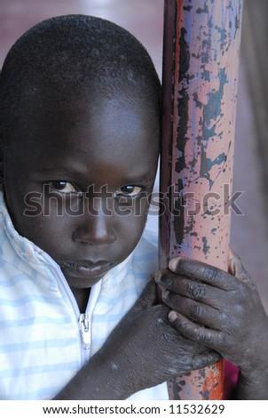 Street orphan - stock photo
