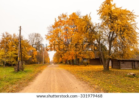 Street view of village with country road, trees and wooden house at golden autumn in Belarus on cloudy weather