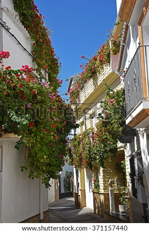 Street with flower pots in facades. Village in the Alpujarra - stock photo