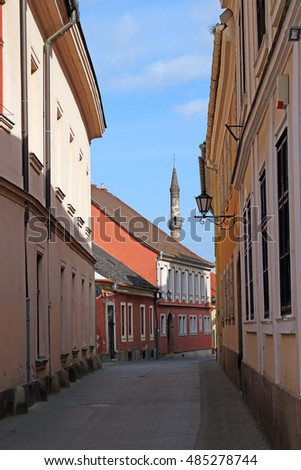 street with old buildings and minaret Eger Hungary