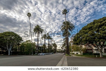 Street with Palm Trees in Beverly Hills - Los Angeles, California, USA