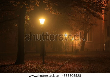 Streetlights in a park on a foggy night in autumn. Shallow D.O.F., long exposure.  - stock photo