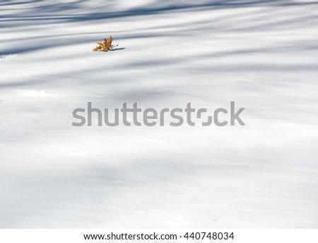Streets of Manhattan after the biggest snow storm in NYC, sunny and with no clouds. - stock photo