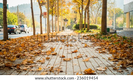Streets of the city in autumn - stock photo
