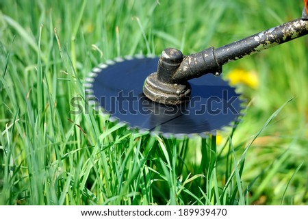 String trimmer mowing the green grass - stock photo