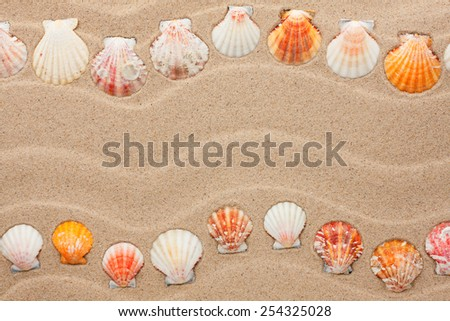 Stripe of sea shells lying on the sand, with space for text - stock photo