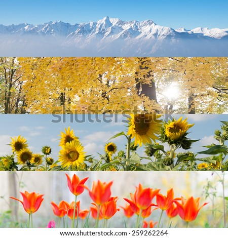 striped collage of four nature pictures in four seasons - stock photo