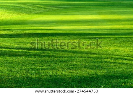 Striped pattern of light and shadows on a beautiful fresh green lawn of a golf course, vibrant color - stock photo