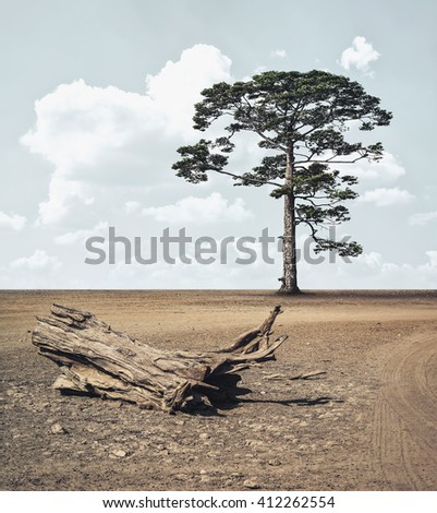 strong tree on the arid land - stock photo