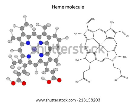 Structural chemical formula of  heme molecule, 2d illustration, isolated on white background, skeletal + circles & sticks style, raster