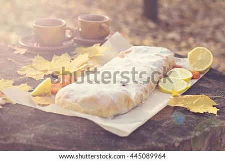 Strudel with apples, pumpkin, apricots, lemon. Autumn table decoration - stock photo