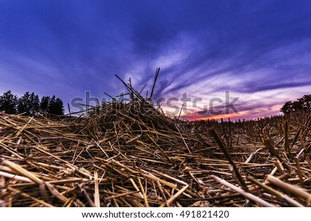 Stubble field and blue hour. Moravian landscape Horni Stepanov.
