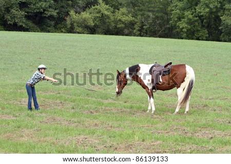 Stubborn horse just wants to eat - stock photo