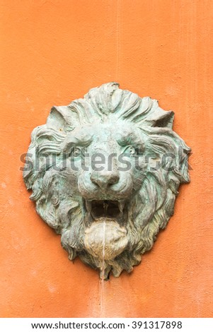 Stucco face of a lion is water was sprayed.