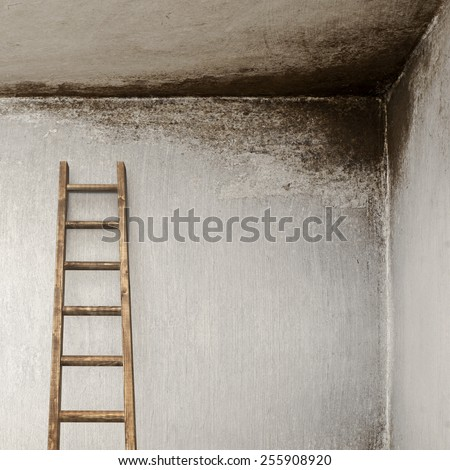 stucco wall with with wooden ladder, molded wall - stock photo