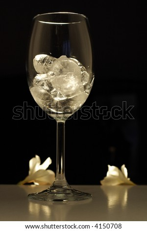 Studio lit glass filled with shiny cubes of ice - stock photo