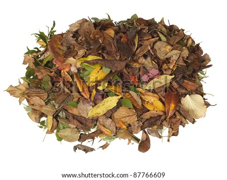 Leaf Pile Stock Images, Royalty-Free Images & Vectors ...