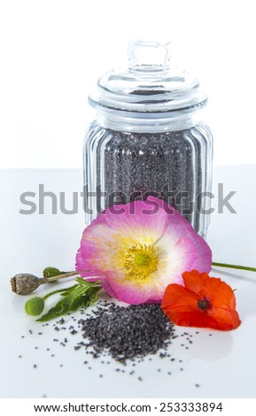 Studio setup of pink and red colored poppy flowers with poppy seeds in a glass jar. Isolated on white background.  - stock photo