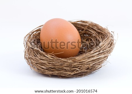 Studio shot of a chicken egg inside a bird nest, isolated on white background with selective focus. - stock photo