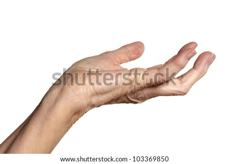 Studio shot of female hand. Isolated on white background.