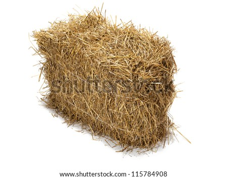 Studio shot of hay, isolated on white.