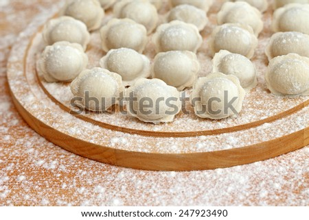 Studio shot of homemade ravioli floured - stock photo