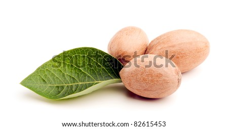 Studio shot of pecans with green leaf on white background