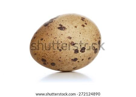 Studio shot of quail eggs - stock photo