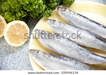 Studio shot of some frozen sardines on a plate waiting to be cooked