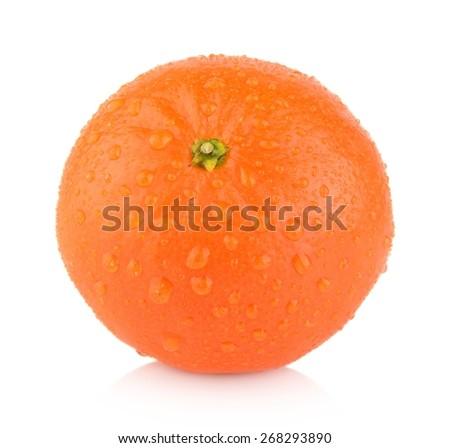 Studio shot wet single mandarine isolated on white background - stock photo
