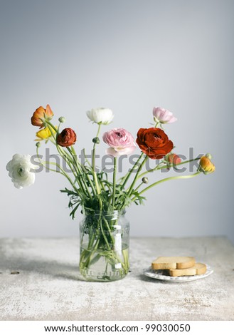 Studio Still Life with beautiful Persian Buttercup Flowers - stock photo