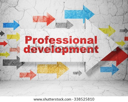 Studying concept:  arrow with Professional Development on grunge textured concrete wall background - stock photo